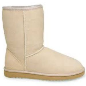 dillards uggs boots womens